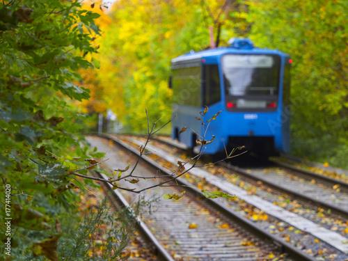 Plakat Rosja, Moskwa, Październik 2017, tramwaj podąża swoją trasą przez jesienny park miejski
