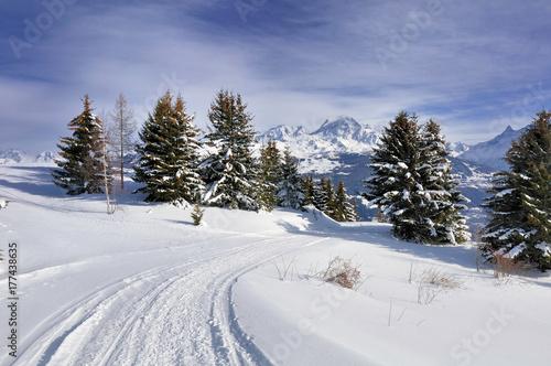 Plakat ścieżka w śniegu