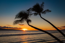 Silhouette Of 2 Palm Trees At Sunset On Kaanapali Beach, West Maui, Hawaii