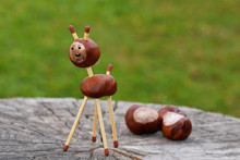 Animal Made From Chestnuts