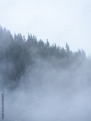 Fotobehang Bossen panoramic view of of mountains in misty forest