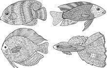 Doodle Zentangle Fish. Zen Art...