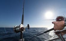 Fishing Rod & Reel On A Charte...