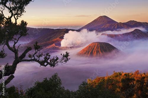 Pinturas sobre lienzo  Mount Bromo Indonesia