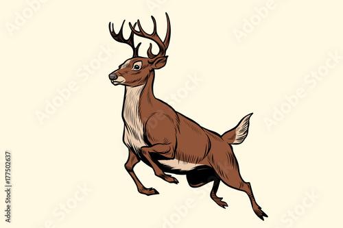 running deer jump