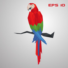 Macaw Parrot Low Poly. Polygon Exotic Bird. Colorful Triangle Vector Illustration On Gray Background.