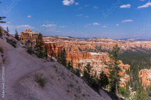 Poster Beautiful landscape. Green pine-trees on rock slopes. Scenic view of the canyon. Bryce Canyon National Park. Utah. USA