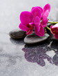 Spa background with pink orchid and stone.