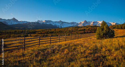 Photo Stands Lavender Colorado Mountain View