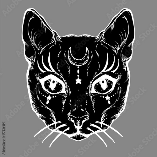 Pagan Magical Black Cat With The Symbol Of The Moon Gothic Graphics