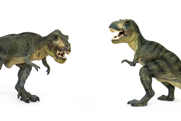 Shooting Hunt and Roaring of Tyrannosaurus (T-rex) Dinosaur isolated on white background.