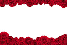 Frame Made Of Red Roses. Isola...
