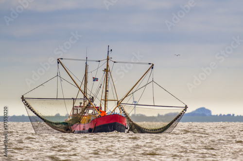 Shrimp fishing cutter vessel on the Wadden sea