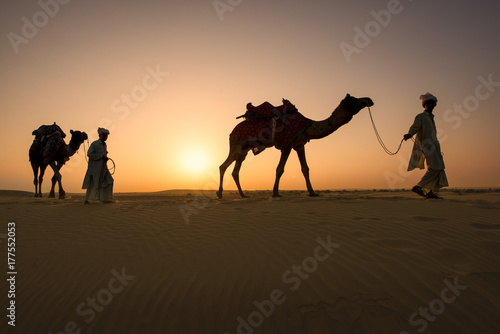 Valokuva  Rajasthan travel background - two indian cameleers (camel drivers) with camels silhouettes in dunes of Thar desert on sunset