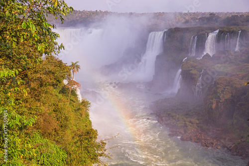 Wall Murals Waterfalls Iguazu Falls in Argentina and Brazil