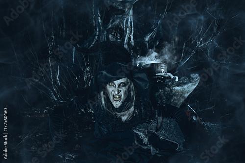 Obraz na plátně terrible wicked witch