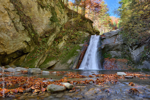 Autumn waterfall and creek woods with yellow trees foliage and rocks in forest m Poster