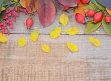 Autumn Leaves Berries Rose Hip...