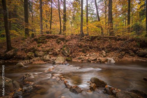 Plakat Halny strumień z siklawą w jesień lesie