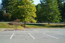 Empty Parking Lot With Autumn Trees