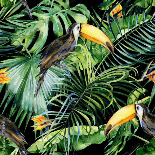 bezszwowa-akwareli-ilustracja-tukana-ptak