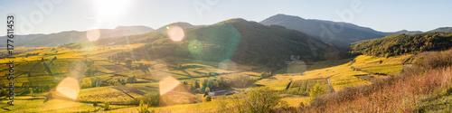 Grand soleil sur le vignoble de Bergheim, Ribeauvillé et collines sous-vosgienne Canvas Print