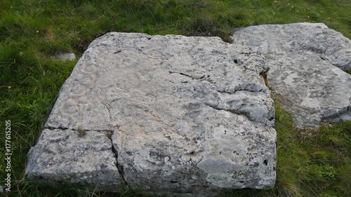Zdjęcie XXL Starożytny tajemniczy cmentarz w Bośni i Hercegowinie
