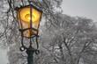 canvas print picture - Straßenlaterne mit verschneiten Bäumen im Winter
