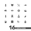 Set Of 16 Bbq Icons Set.Collection Of Chicken, Grill Top View, Matchstick And Other Elements.