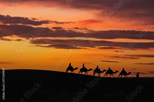Foto op Aluminium Marokko Morocco Merzouga Erg Chebbi sand dunes caravane sunset