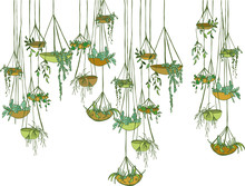 Modern Suspended  Pots With Plants