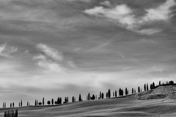 Panel Szklany PodświetlaneThe famous Tuscan Crete Senesi in black and white