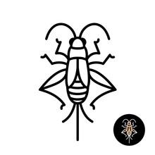 Cricket Insect Stylized Logo.