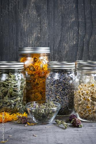 Photo  Herbs in jars