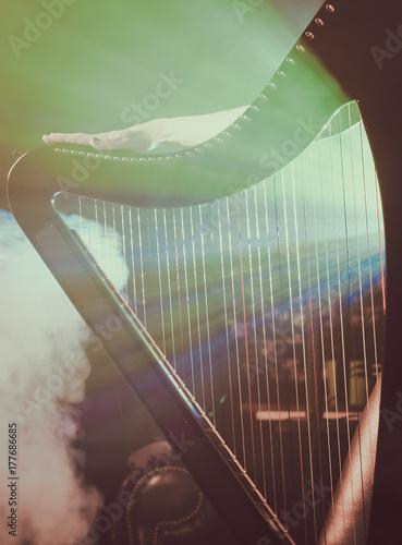 Carta da parati Electro harp in the rays of light