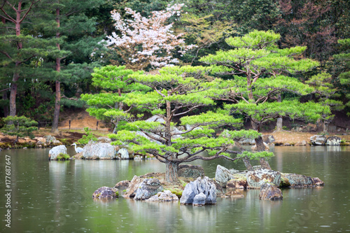 Photographie One of 10 smaller islands of the Mirror Pond (Kyoko-chi lake) is in a magnificent Japanese strolling garden