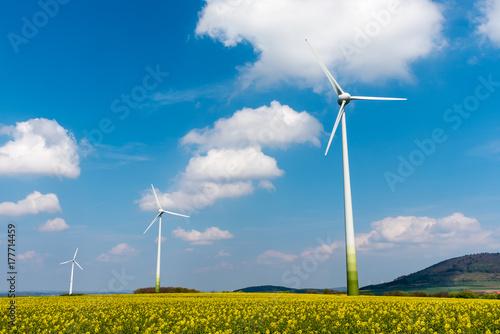 Zdjęcie XXL Silniki wiatrowe w polu rzepaku w Niemczech
