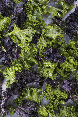 Poster Vegetal Purple and Green Kale