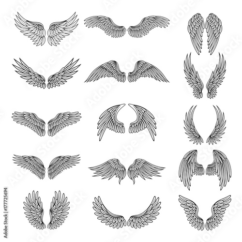 Fototapeta Monochrome illustrations set of different stylized wings for logos or labels design projects. Vector pictures set obraz