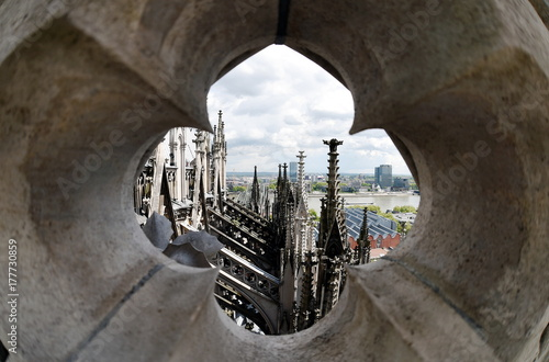 Fotografie, Obraz  Rare view of Cologne Cathedral roof