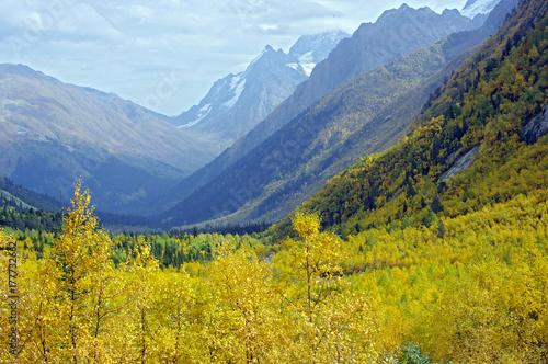 Zdjęcie XXL Kolory złota jesień w górach