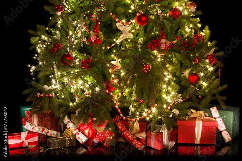 Fototapeta Under the christmas tree obraz na płótnie