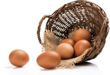 Fresh Farm Eggs.