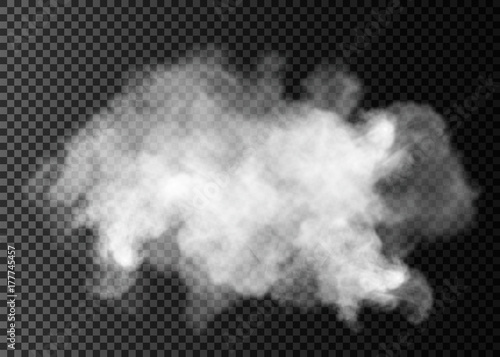 Poster de jardin Fumee Fog or smoke isolated transparent special effect. White vector cloudiness, mist or smog background.