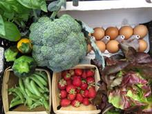 Farm Fresh3