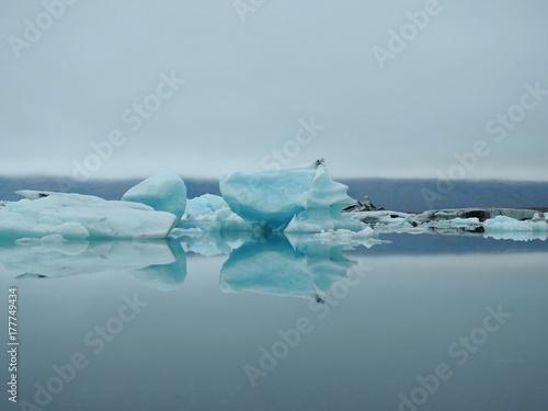 Zdjęcie XXL Między górami i oceanami, wulkanami i fiordami, fauna i flora Islandii