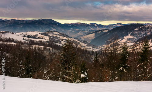 forest on snowy hills in mountains at dawn. gorgeous winter landscape with high mountain ridge in the distance