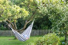 Laydy Resting In Hammock