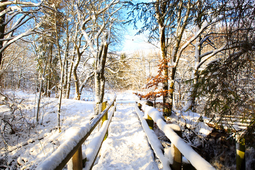 Poster Cappuccino Winter forest and wooden bridge.