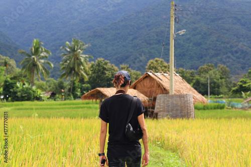 Plakat Azjatycki dziewczyny odprowadzenie na zielonym ryżu śródpolnym środkowym widoku góra